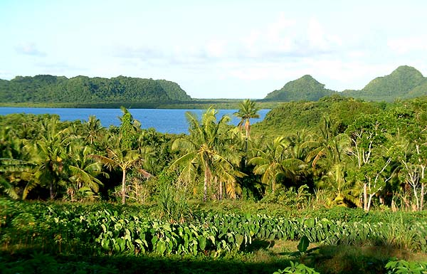 Palau: Airai -- Native Place: Village